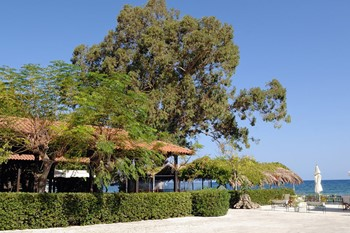 Mimoza Beach Hotel, Закинф