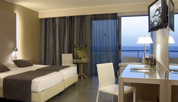 Twin / Double Room for Single Use Sea View