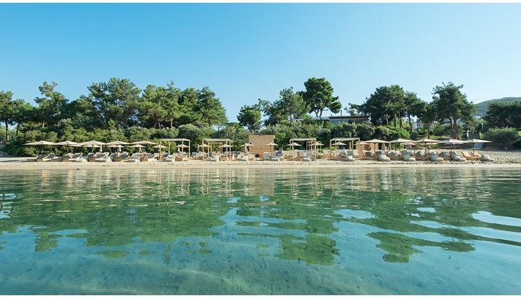 Trikorfo Beach Hotel, Халкидики