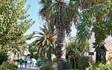 Grecotel Royal Park, Кос