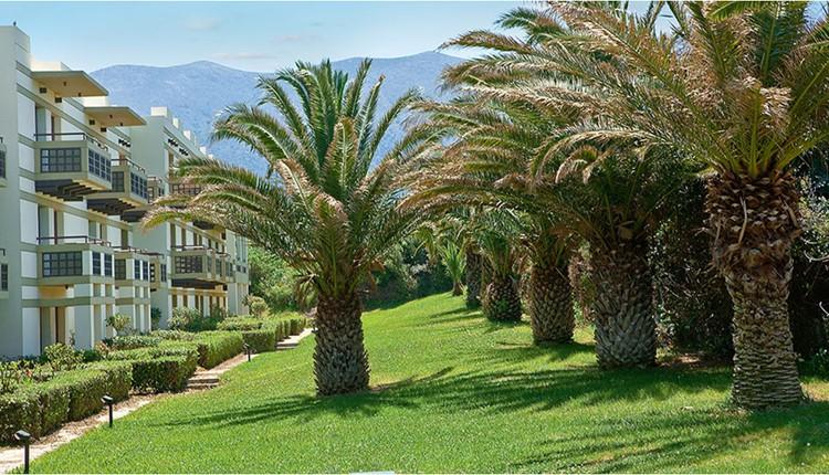 Suite 1Bedroom Garden View