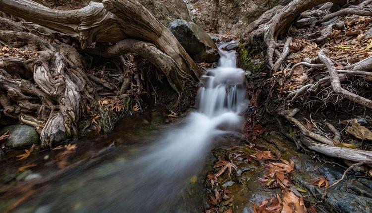 Тродос, Кипр