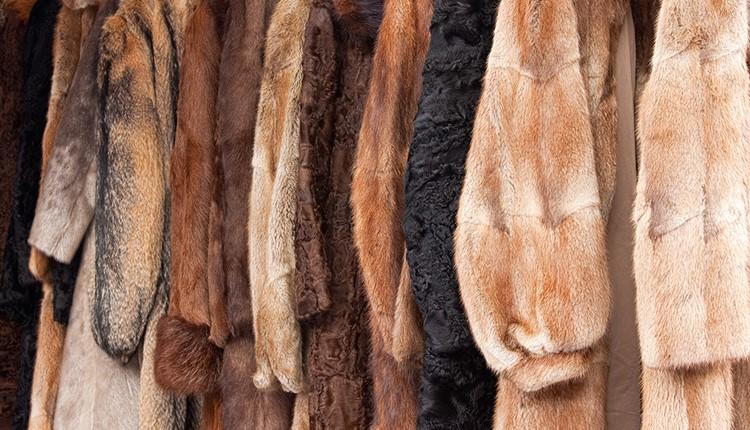 Меховая Феерия с обязательством покупки шубы, Салоники
